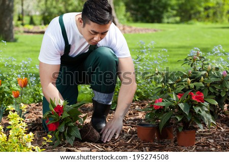 Planting flowers in a beautiful green garden - stock photo