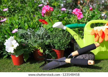 planting flowers with garden tools ,various flowers and herbs in flower pots. - stock photo