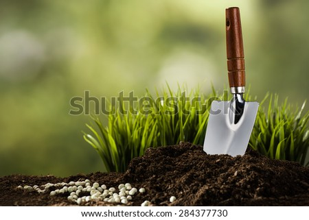 Planting in the summer - stock photo