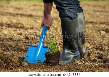 Planting new life. Digging hole for plant