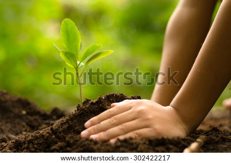 Planting,Seeding,Seedling,Close up Kid hand planting young tree over green background