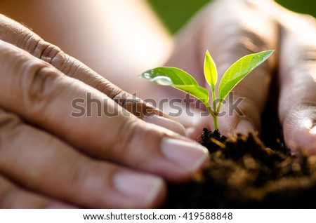 Planting,Soil,hope,Earth,Seeding,Seedling,Close up Male hand planting young tree over green background - stock photo