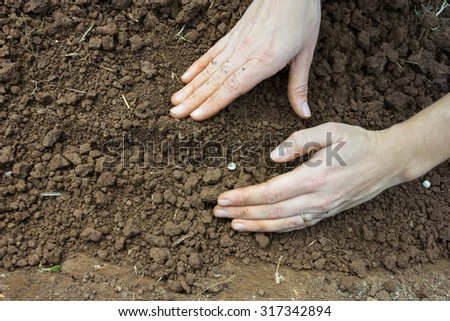 Planting, Sowing - Woman Hand Covering Seeds into the Soil - stock photo