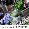Plants and flowers arranged on a patio - stock photo