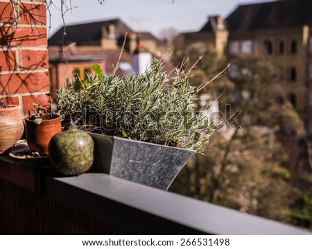 Plants and flowers growing in baskets on a balcony - stock photo