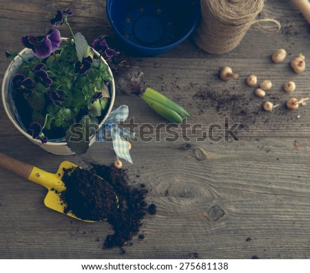 Plants for planting and garden accessories on a wooden table vintage - stock photo
