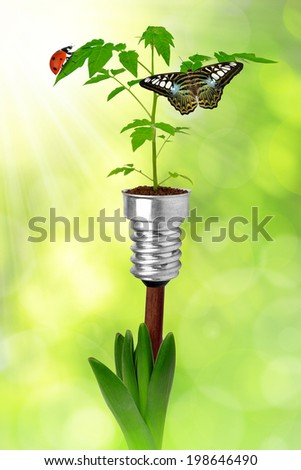 plants growing from bulbs on green background - stock photo