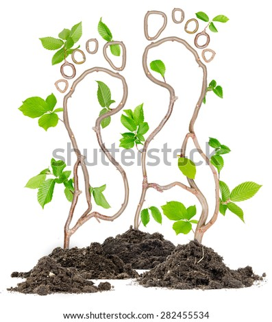 Plants growing from soil heaps forming foot prints