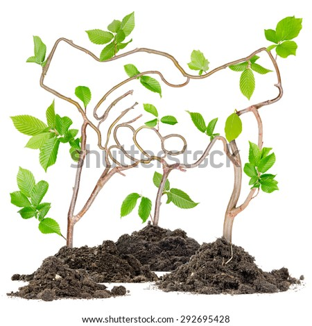 Plants growing from soil heaps forming handshake - stock photo