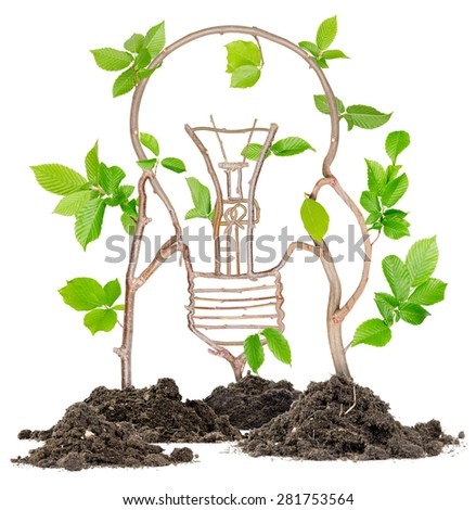 Plants growing from soil heaps forming light bulb - stock photo