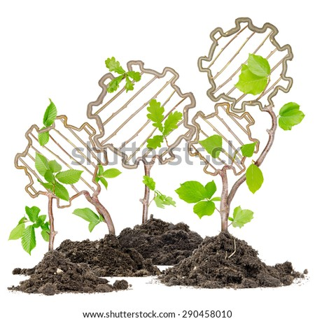 Plants growing from soil heaps forming tooth wheels - stock photo