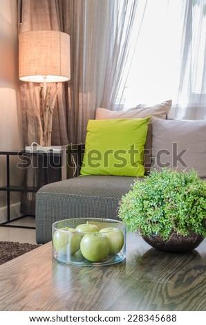 plants in ceramic vase in living room at home - stock photo