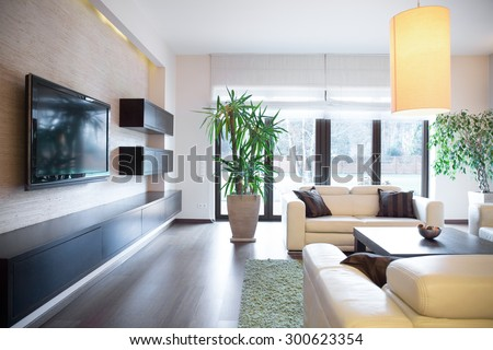 Plasma tv on the wall in drawing room - stock photo