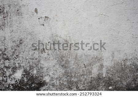 plaster wall background - stock photo