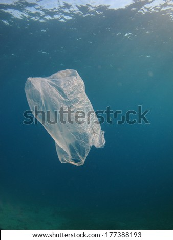 Plastic Bag floating underwater in the Red Sea