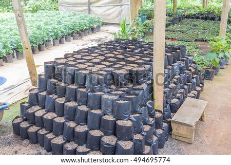 plastic bag with a soil , preparing for cultivation, agriculture business, plant growing, farming, crop, potting