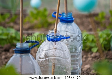 Plastic bottle cloches - stock photo