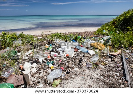 Plastic garbage has washed up on a remote beach in the Caribbean Sea. Toxins from plastic can enter the food chain and threaten marine life and human health.