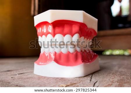 Plastic human teeth models on wood - stock photo
