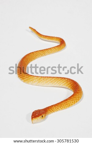 Plastic snake isolated in front of a white background - stock photo