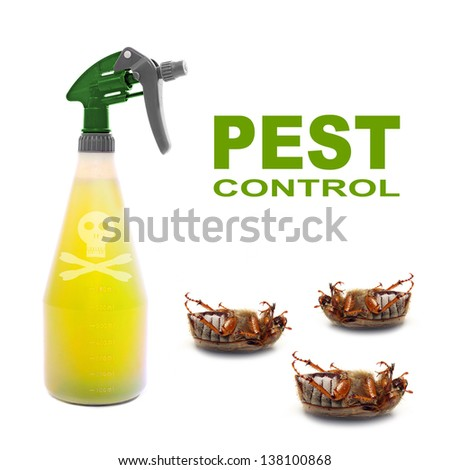 Plastic sprayer with insecticide and dead bugs. Pest control concept. - stock photo