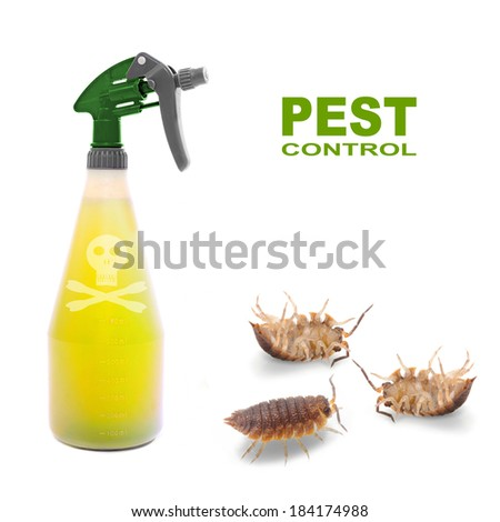 Plastic sprayer with insecticide and The Pill-bugs (Armadillidium vulgare). Pest control concept. - stock photo