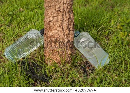 Plastic water bottles on the grass, leaning against the tree when the creatures need water.  - stock photo