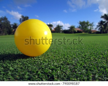 Plastic yellow ball on short grass in tropical environment