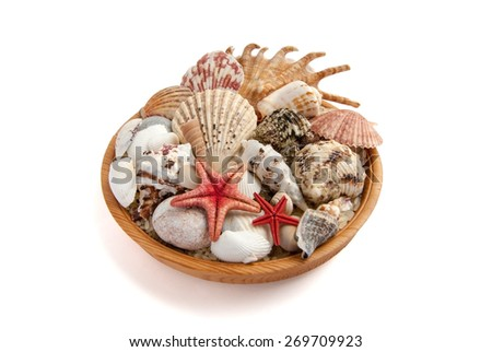 Plate full of seashells on a white background