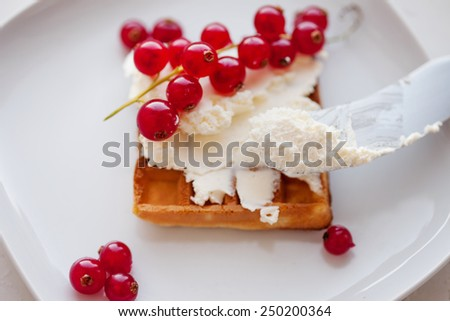 Plate of belgian waffles with cream cheese - stock photo