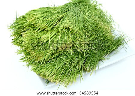 Plate of clean wheatgrass over white.