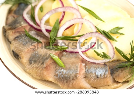 Plate of herring fish fillets with potato, dill and red onion rings - stock photo