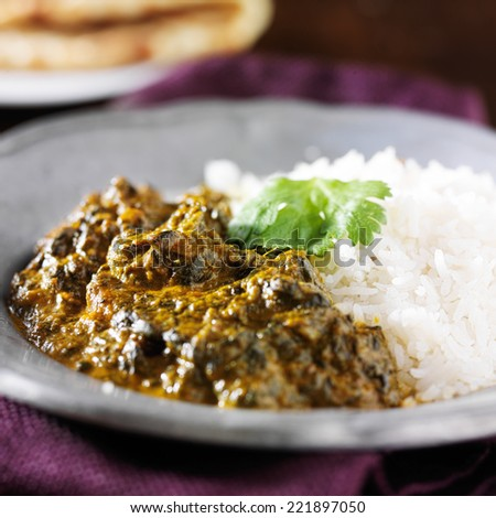plate of indian saag paneer curry close up - stock photo