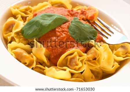 Plate of Italian bolognese tortelloni, fresh egg pasta made with durum wheat, with creamy tomato sauce and fresh basil leaves