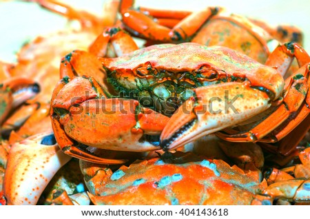 Plate of red boiled crabs Mediterranean. One of the crab close-up. Natural composition - stock photo