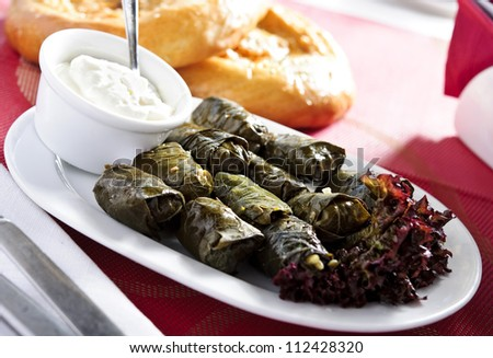 Plate of traditional eastern vine leafs. - stock photo