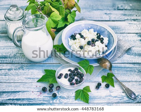 Plate with fresh cottage cheese, a jug with milk and ripe blackcurrant on a wooden table. Healthy food. Food background. Farmer products. Vintage tone - stock photo