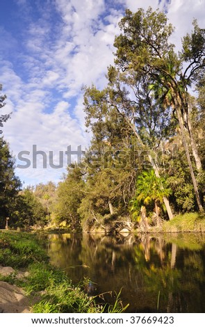 Platypus pool - Carnarvon Gorge - stock photo