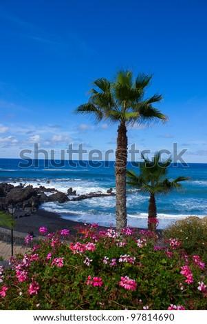 playa Jardin (beach garden), Puerto de la Cruz, Spain - stock photo