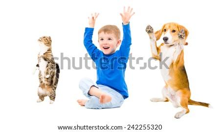 Playful boy, dog and cat isolated on white background - stock photo