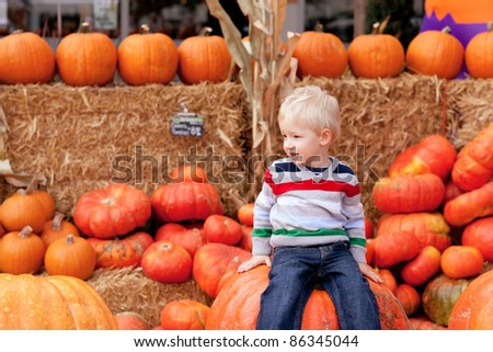 playful caucasian toddler sitting on the huge pumpkin