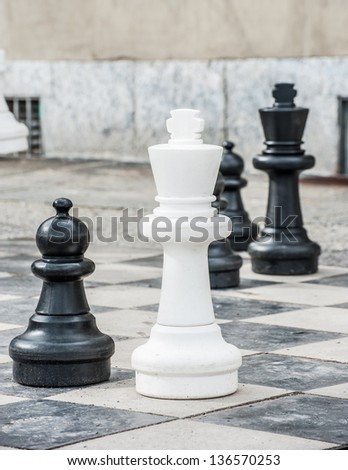 Playing Giant chess