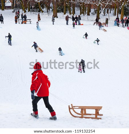 Playing in a winter park. New year. Christmas. - stock photo