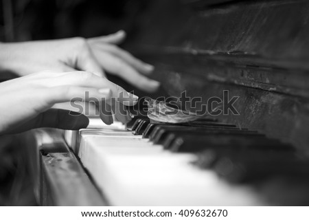 Playing the music of Nature on left out piano. - stock photo