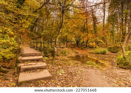Plessey Woods trail over footbridge / Plessey Woods Country Park is located in south Northumberland and is particularly rich in colour during autumn with the River Blyth running through it - stock photo