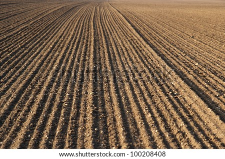 plough agriculture field before sowing - stock photo