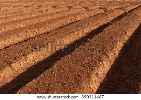 ploughed brown fertile farmland in a spring