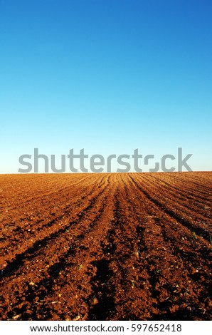 ploughed field at south of Portugal