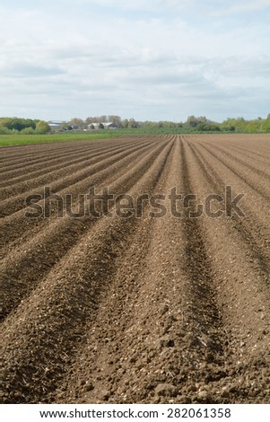 Ploughed field on farm