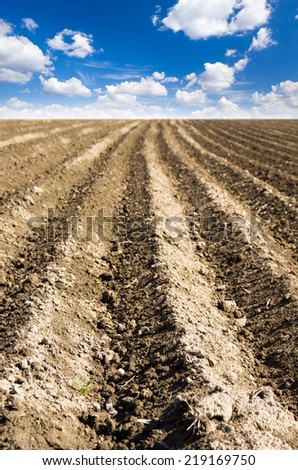 ploughed field with sky - stock photo